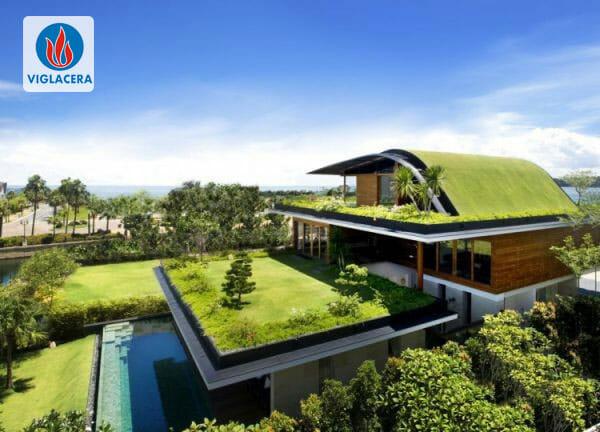 Mái nhà xanh với cây và kính - Khó trong kỹ thuật, tỉ mỉ trong thi công