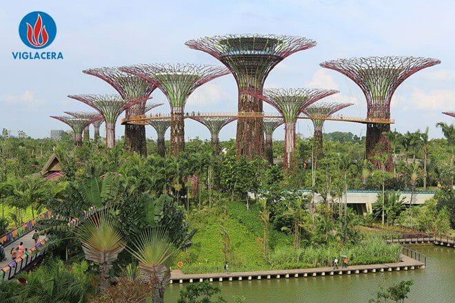 Singapore - Thành phố xanh bậc nhất thế giới